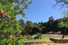 Finca Can Trui Mallorca